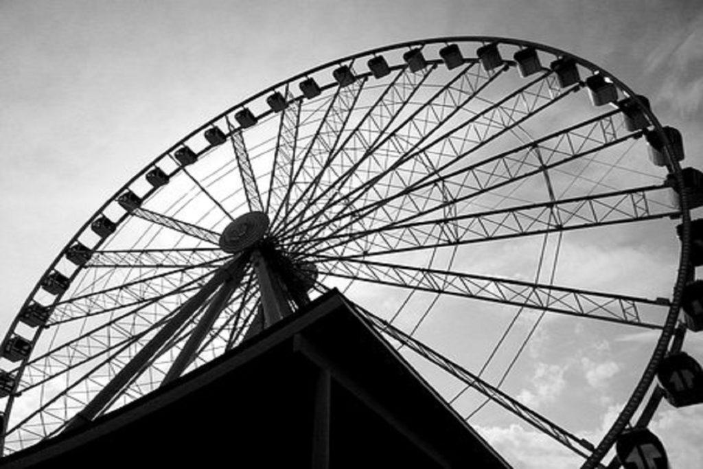 Entertainment / Theme Park